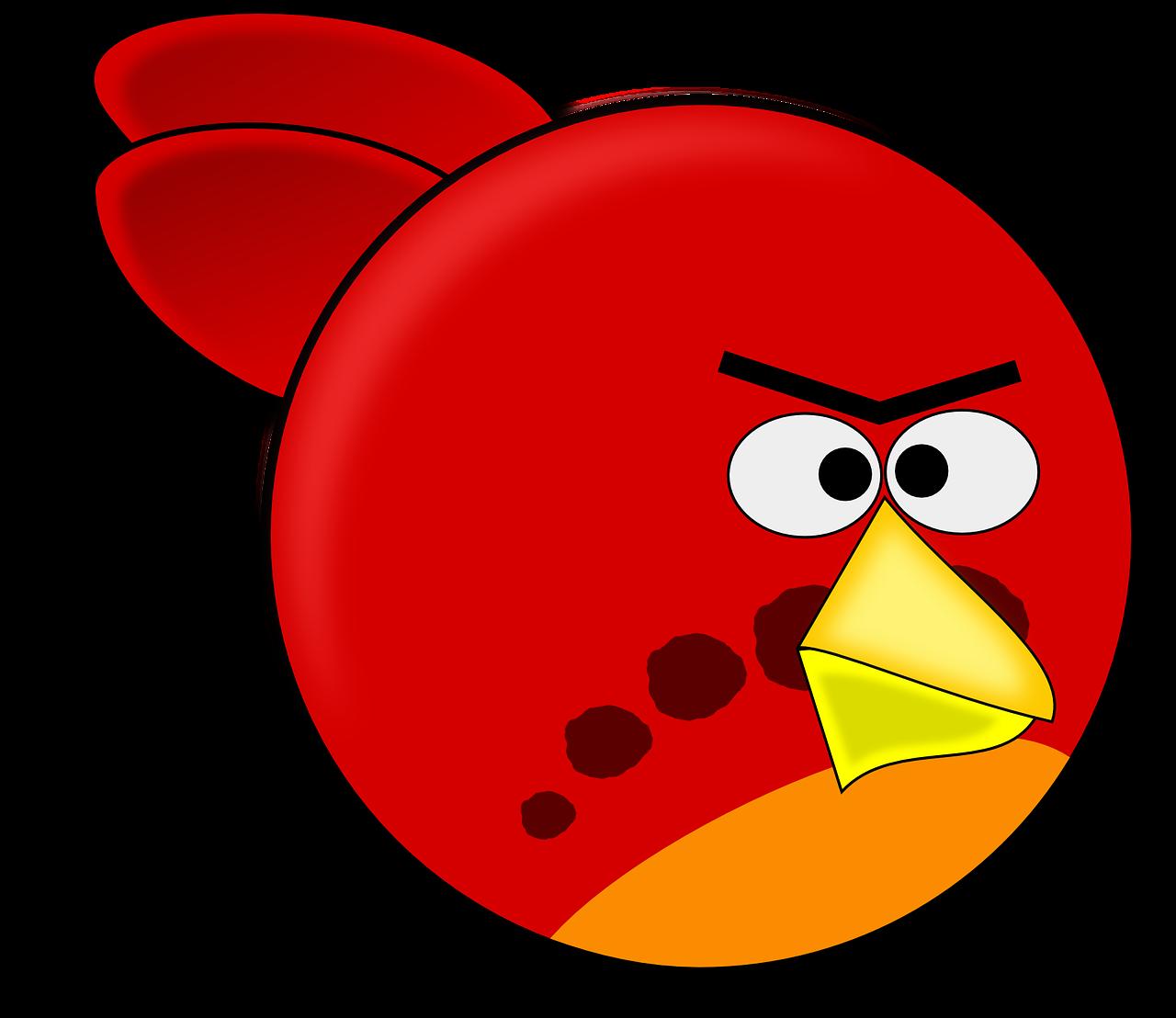 angry pigeon - photo #40